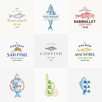 Premium quality seafood logo templates collection hand drawn fish sketches