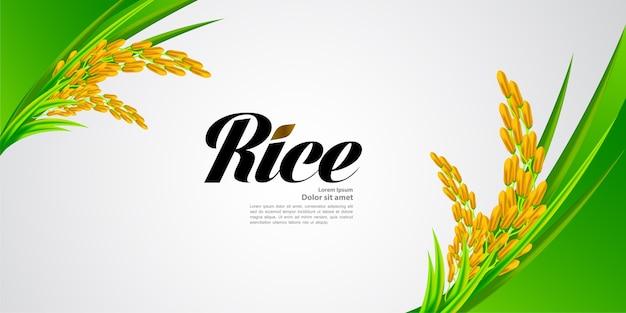 프리미엄 쌀 훌륭한 품질의 디자인.