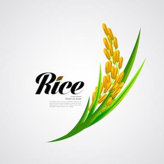 Premium rice отличный дизайн.