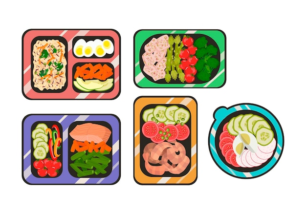 Prepared meals in containers a daily diet of healthy food vector illustration in a flat style