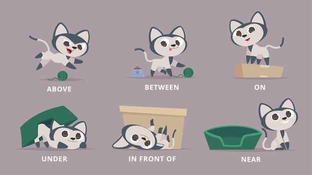 Предлоги. кошка играет с коробкой, изучая английские предлоги на нижнем углу рядом с животным векторной грамматики дошкольного возраста. образование английское положение, иллюстрация позы мультяшного животного
