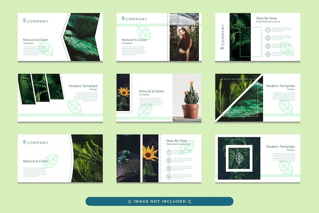 Presentation template design in pastel green with a modern, simple and professional style suitable for the use of eco green company presentations, botanical gardens, forest conservation campaigns.