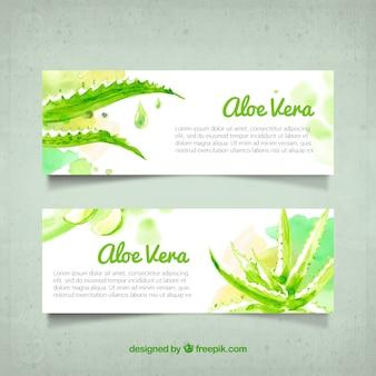 Pretty aloe vera watercolor banners