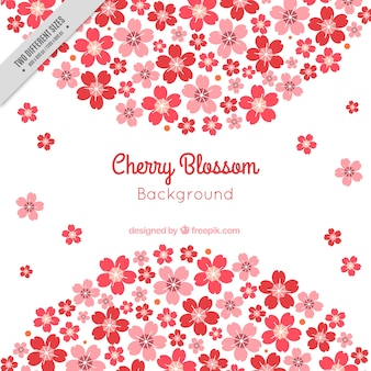 桜のきれいな背景