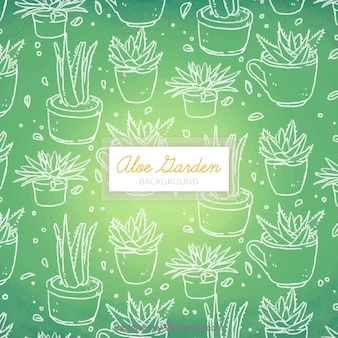 Pretty green background of aloe vera sketches