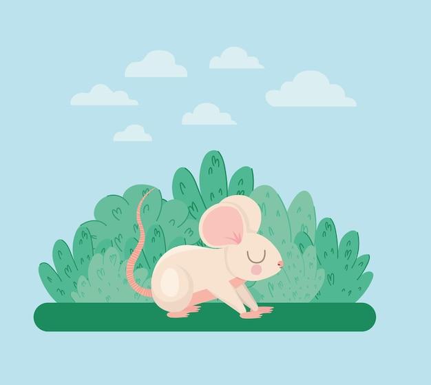 Pretty mouse illustration