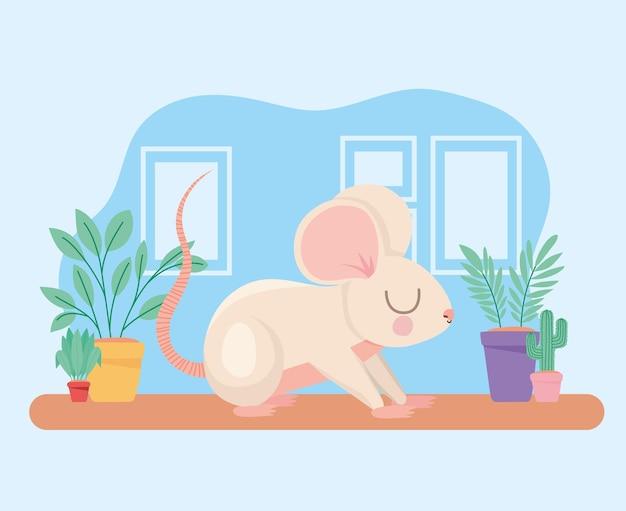 Pretty mouse representation