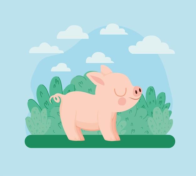 Pretty piggy illustration
