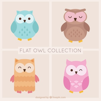 Pretty selection of owls in pastel colors