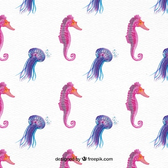 Pretty watercolor seahorse background