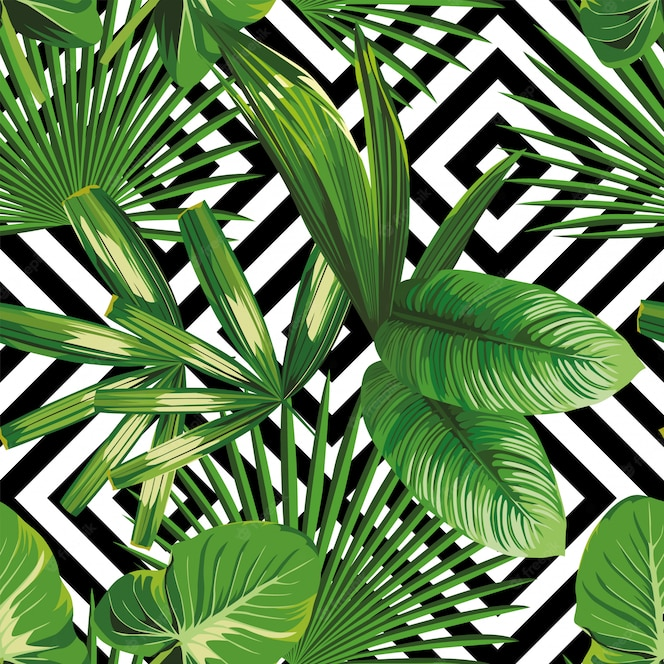 Premium Vector Print Summer Exotic Jungle Plant Tropical Palm Leaves Pattern Seamless Floral Vector On The Black White Geometric Background Nature Wallpaper Can be used in wall decoration. print summer exotic jungle plant