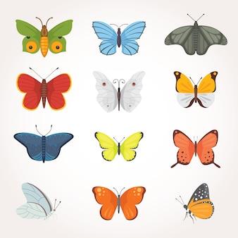 カラフルな蝶のイラストのプリントセット。夏の虫。