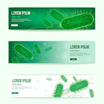 Probiotics vector horizontal green web banners set