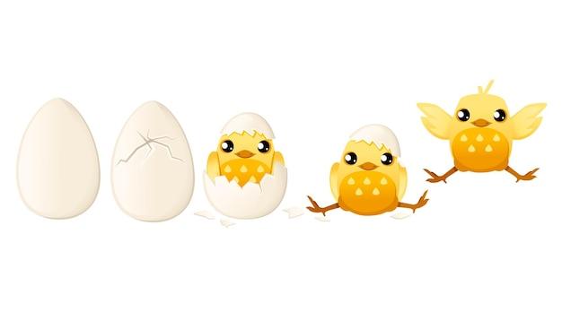 白い背景の上の卵漫画動物デザインフラットベクトルイラストから赤ちゃんの鶏の孵化を処理します。