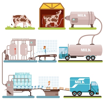 Production of milk set, milk industry cartoon  illustrations