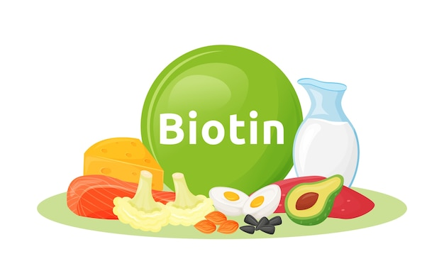 Products containing biotin cartoon  illustration. seeds and organic dairy products  color object. good nutrition  on white background