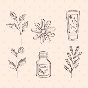 Products of natural cosmetic