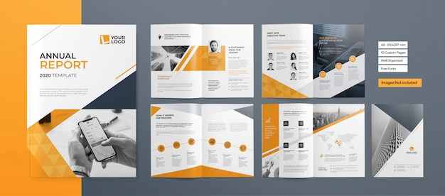 Professional booklet or business presentation