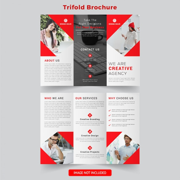 Professional business trifold brochure design