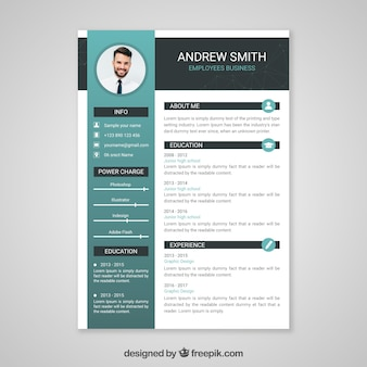professional curriculum vitae template - Modern Resume Template Free Download