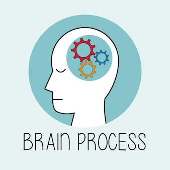 Profile human head brain process