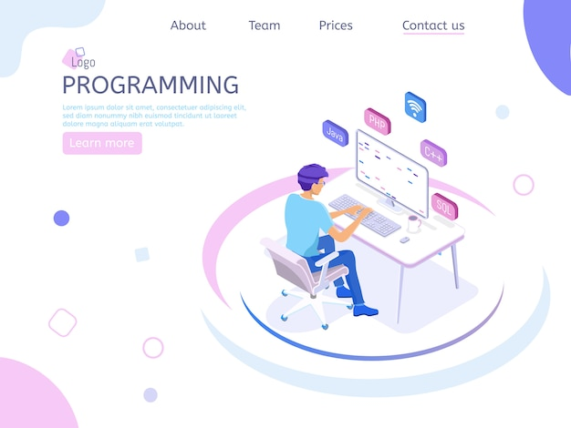 Programmer isometric landing page