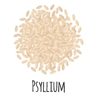 템플릿 농부 시장 디자인, 라벨 및 포장을 위한 psyllium. 천연 에너지 단백질 유기농 슈퍼 푸드. 벡터 만화 격리 된 그림입니다.