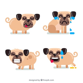 Pug collection with flat design