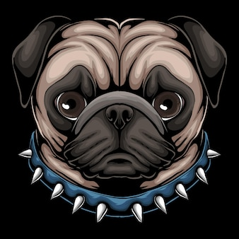 Pug dog head a wearing blue collar with spikes cartoon illustration on black background