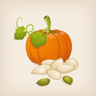 호박과 씨앗. 삽화.