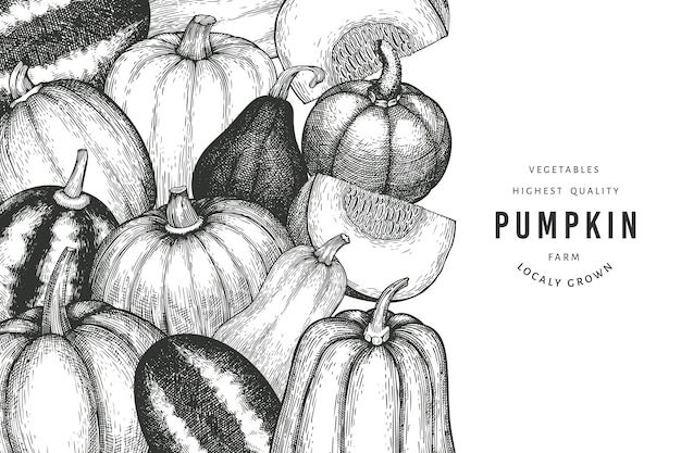 Pumpkin color design template. vector hand drawn illustrations. thanksgiving backdrop in retro style with pumpkin harvest. autumn background.