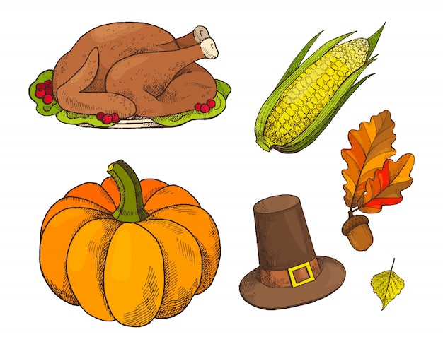 Pumpkin and cooked meet of turkey icons vector