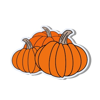 Pumpkin in a flat style. pumpkin sticker isolated on white background. good for postcards, banners and social media design. vector.