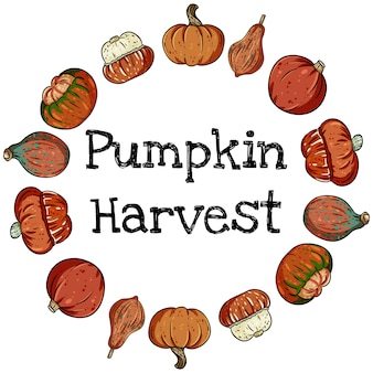 Pumpkin harvest decorative wreath banner with cute colorful pumpkins.