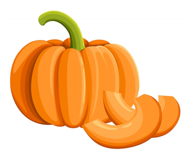 Pumpkin icon, harvest thanksgiving  illustration  on white.   style. fresh cartoon different vegetable web site page and mobile app design