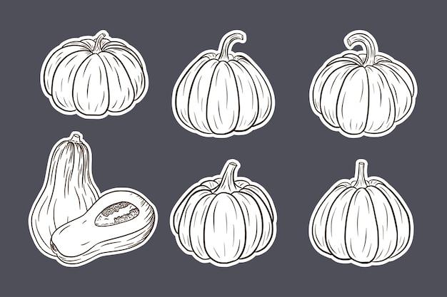Pumpkin illustrations sticker set. fresh ripe pumpkins collection for prints, invitation, menu and greeting cards design and decoration. premium vector