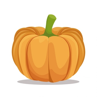 Pumpkin nutrition healthy
