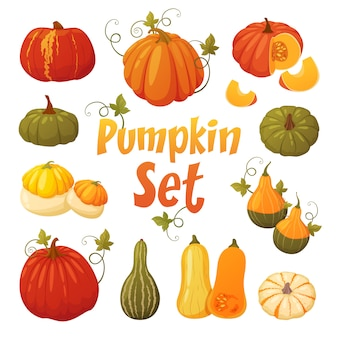 Pumpkin set with leaves isolated.