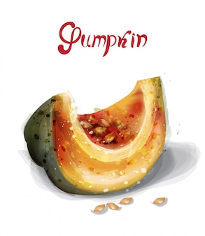 Pumpkin slice in watercolor