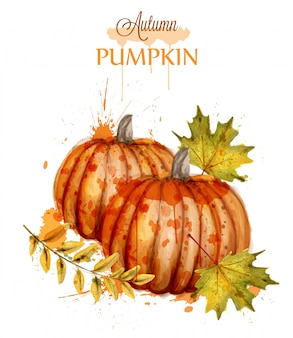 Pumpkin watercolor autumn background