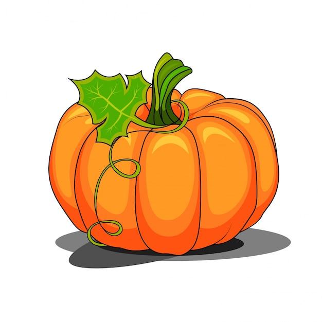 Pumpkin with a leaf catoon