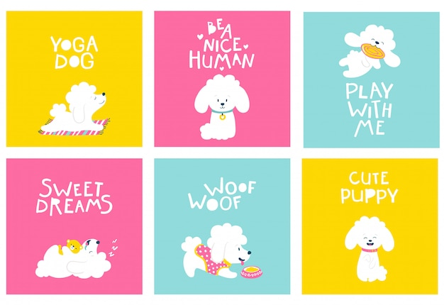 Puppies dog. set of friendly postcards with a poodle. cartoon illustration of a white animal on bright backgrounds in a simple childish hand-drawn style