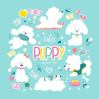 Puppies set. funny white little poodle dogs in a daily routine.