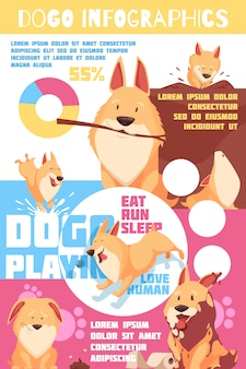 Puppy behavior infographics with charts