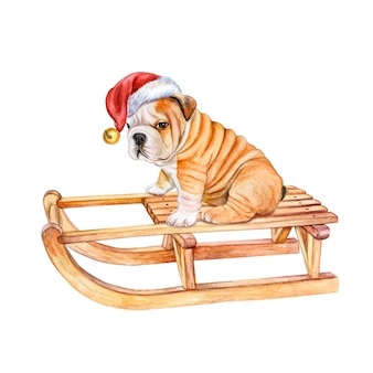 흰색 배경 그림에 고립 된 산타 모자에 썰매 개 영어 불독에 강아지