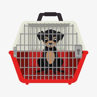 Puppy pet travel carrier icon
