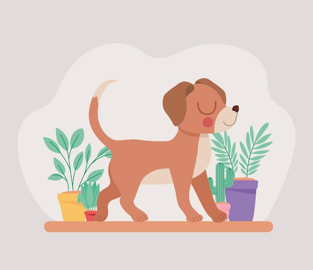 Puppy and plants