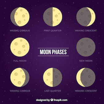 Purple background with flat phases of the moon