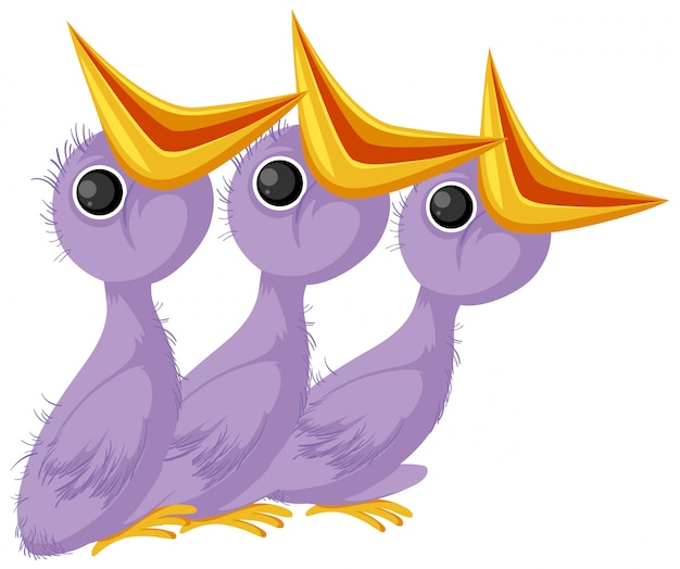 Purple chick cartoon character
