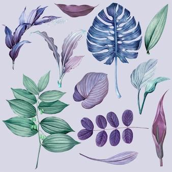 보라색 잎 컬렉션 디자인 벡터